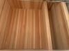 3 Burnett #8 sauna